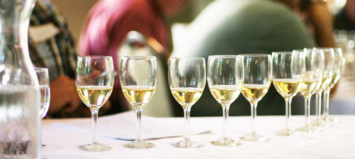 Flight of white wines, image copyright Elise Bauer 2006